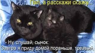 591 приколы животных фото +с надписями