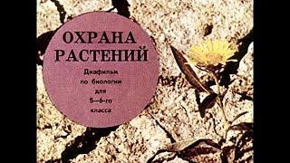 Диафильм Охрана растений /по биологии для 5-6 класса/