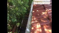 Gutter cleaning and skylight cleaning in Lane Cove