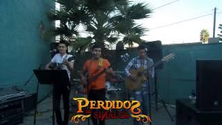 Chaparrita Pelo Largo (EN VIVO) - Perdidos de Sinaloa