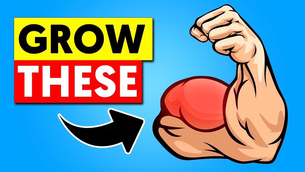Get an Insane Bicep Bulge With This Workout