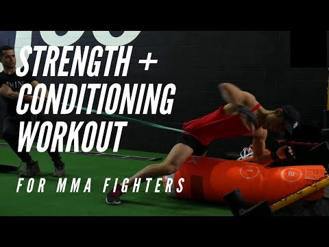 PRO MMA Fighter Strength & Conditioning Workout