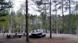 Kaipuu Pohjois-Karjalaan