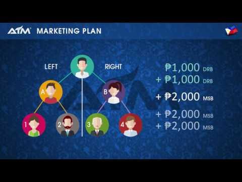 Alliance in Motion GLobal Marketing Plan