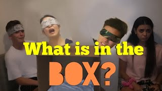 What's in the box challenge ft. Bailey, Josh, Hina and Sabina!