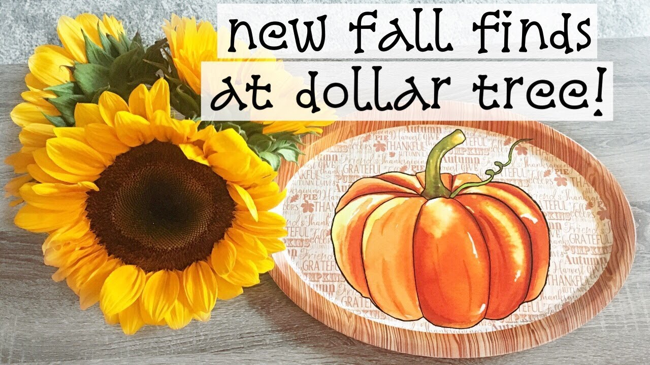 dollar tree haul more new fall halloween stuff youtube