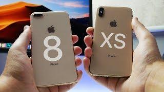 iphone 8 plus honest review