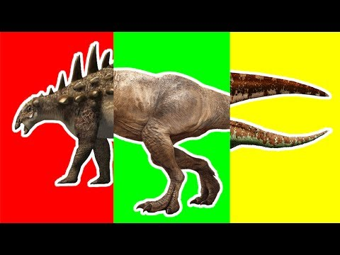 Wrong Heads Dinosaurs! Match Up Game Learn Dinosaur Tyrannosaurus Rex Crying Learning Dino Toys Kids