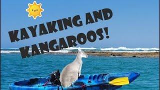 Kayaking & Kangaroos in Kalbarri