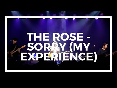 The Rose - Sorry (my experience)