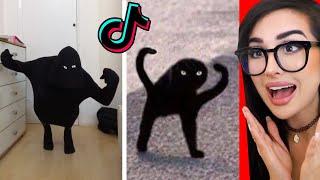 Tik Tok LOOKALIKE Meme Challenge