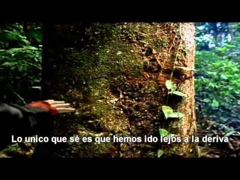 Canción de la Tierra ( Earth Song)-Michael Jackson/Subtitulada en Español mp3