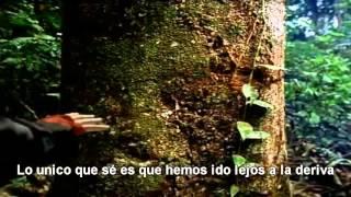 Canción de la Tierra ( Earth Song)-Michael Jackson/Subtitulada en Español(Tomemos conciencia , nos queda muy poco tiempo.. entendamos el Mensaje... Comparte., 2013-10-20T02:34:16.000Z)