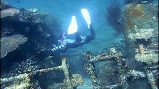 Explore the sunken ship by skin diving 宮古島八重干瀬