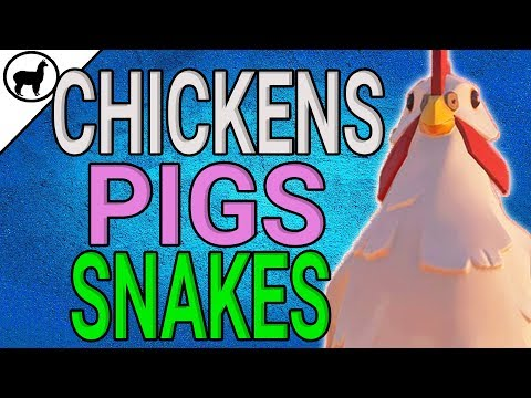 How to Find Chicken Pig and Snake Locations | Merchant Alliance Guide | Sea of Thieves | SoT