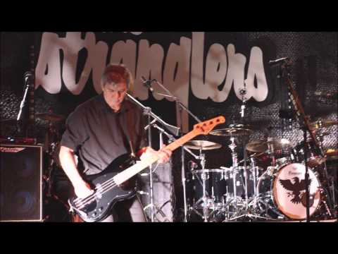 The Stranglers - 'Genetix' - Live at The Cliffs Pavilion, Southend - 13.03.15
