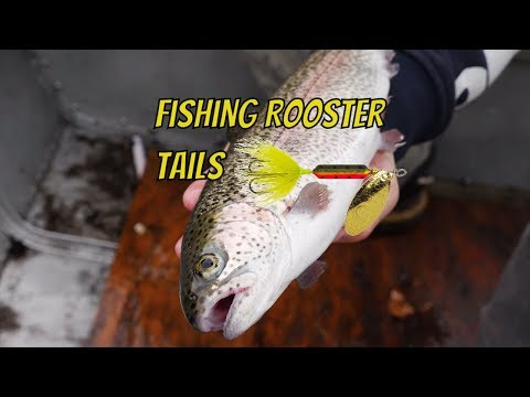 How To Fish Rooster Tail Spinners For Trout