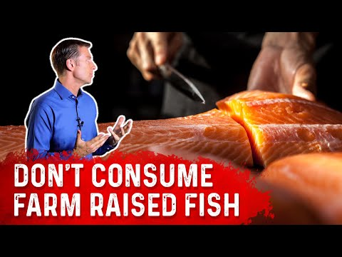 Farm Raised Fish OR Wild Caught Fish, Which Is Best To Consume? - Dr.Berg