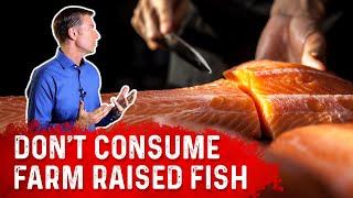 Do NOT Consume Farm Raised Fish Anymore