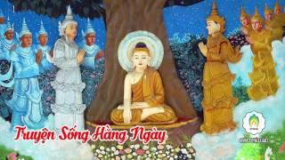 Kể Chuyện Đêm Khuya - Chuyện Sống Hằng Ngày P2 - Những Lời Phật Dạy - MP3 Phật Giáo