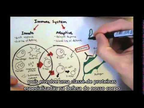 aula-de-imunologia-básica