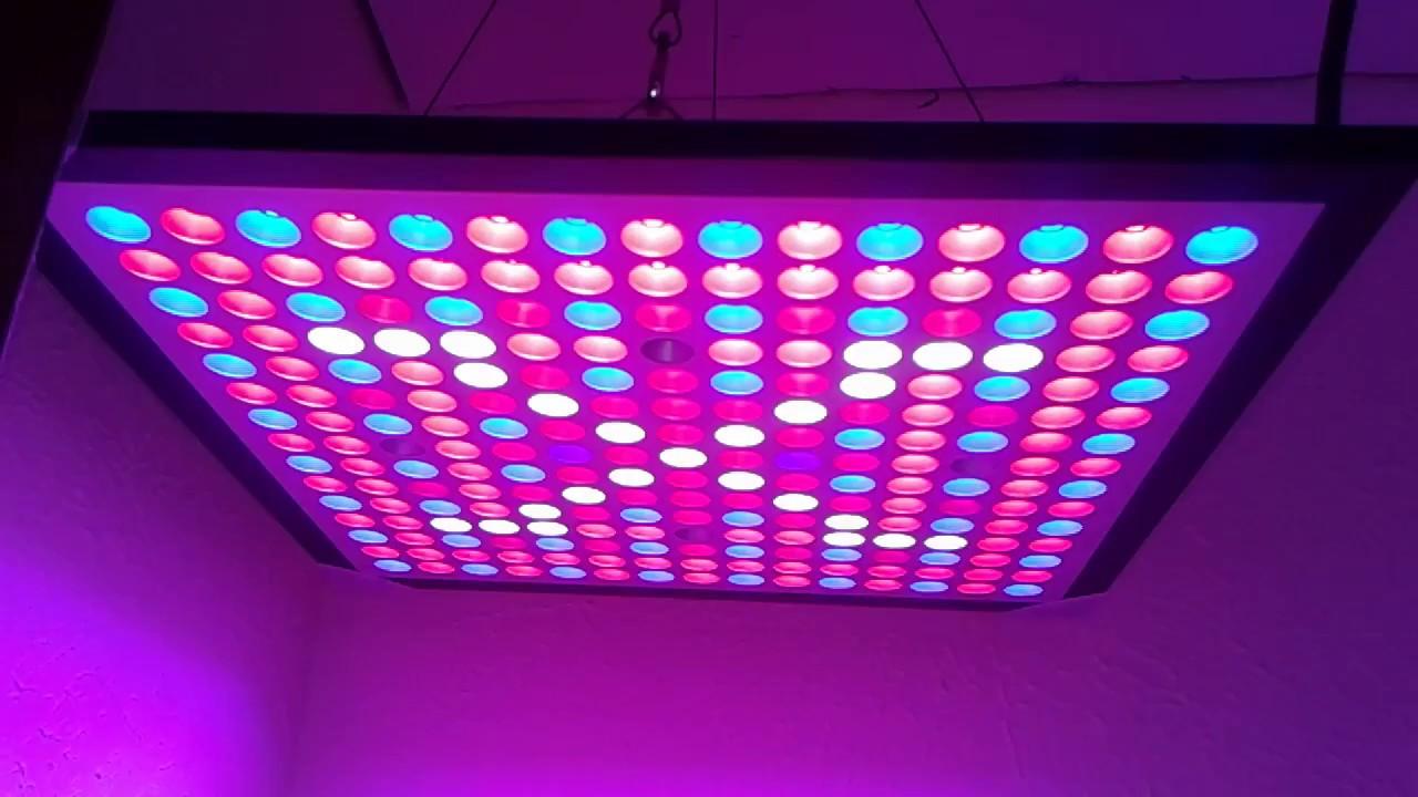 Kingbo Reflector 45w LED Grow Light Panel Review