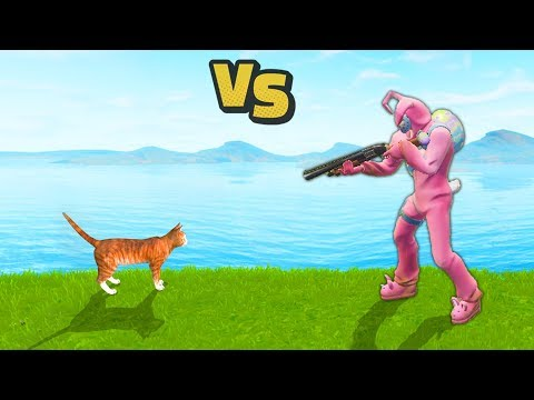 CAT Kills A Pro Player | Fortnite WTF, Troll & Funny Moments #14