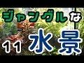 ジャングルアクアリウム【生い茂り水槽】