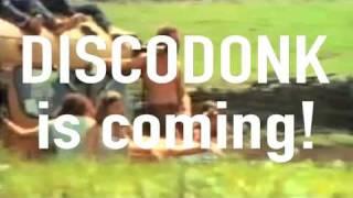 Discodonk - Borino Oro