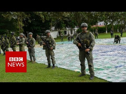 Colombia seizes largest stash of cocaine ever - BBC News
