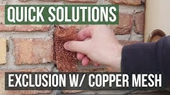 Quick Solutions: How to Use Stuf-Fit Copper Mesh to Exclude Rats & Mice