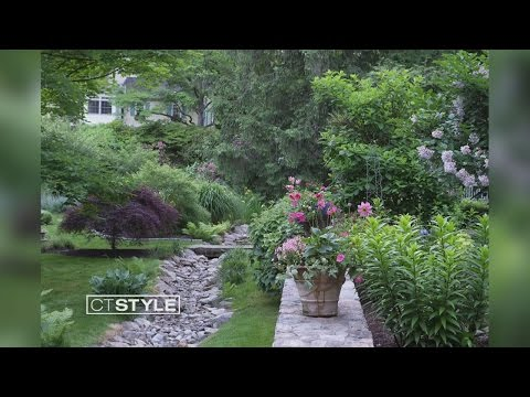 Garden Photography and its beauty