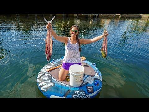 HAND FEEDING Backyard CANAL FISH! Feeding FRENZY!!
