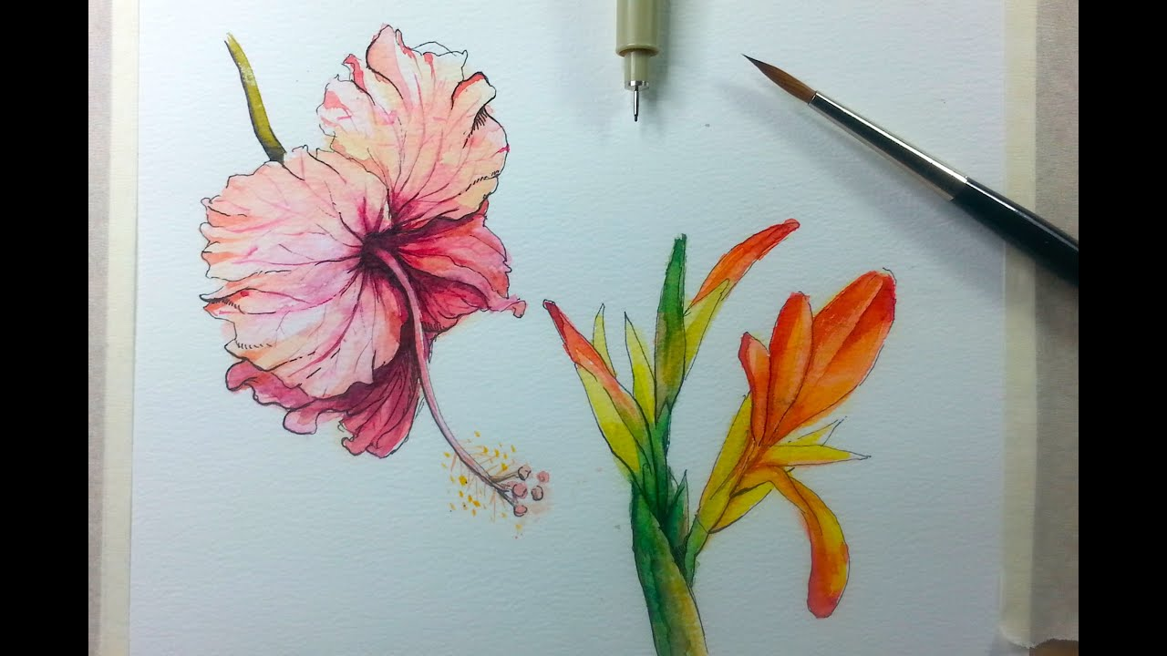 drawing painting hibiscus flower with ink watercolor