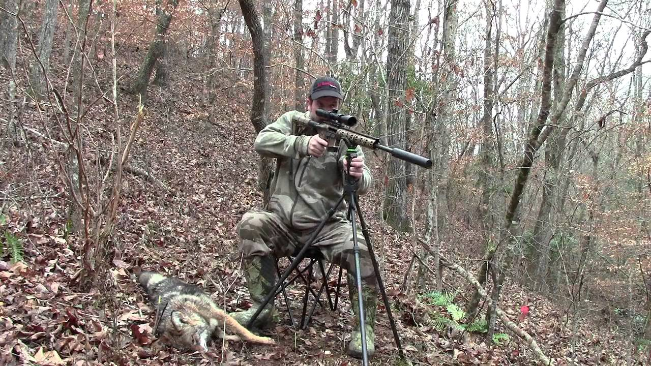Coyote Chair Hunting  YouTube