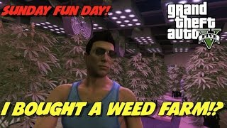 I BUY A WEED FARM IN GTAV!? WHAT!? SUNDAY FUN DAY