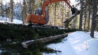 Skogsarbeid 2011 (Leif Liodden)