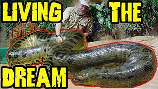 Biggest Anaconda I Ever Touched and Reptile Room of Oddball Creatures?
