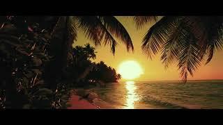 YouTube   #JLo #BadBunny #TeGuste Jennifer Lopez & Bad Bunny - Te Guste (Official Music Video)