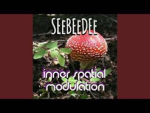 Inner Spatial Modulation