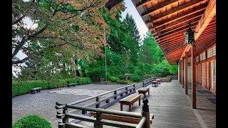 11 Best Tourist Attractions In Portland, Oregon