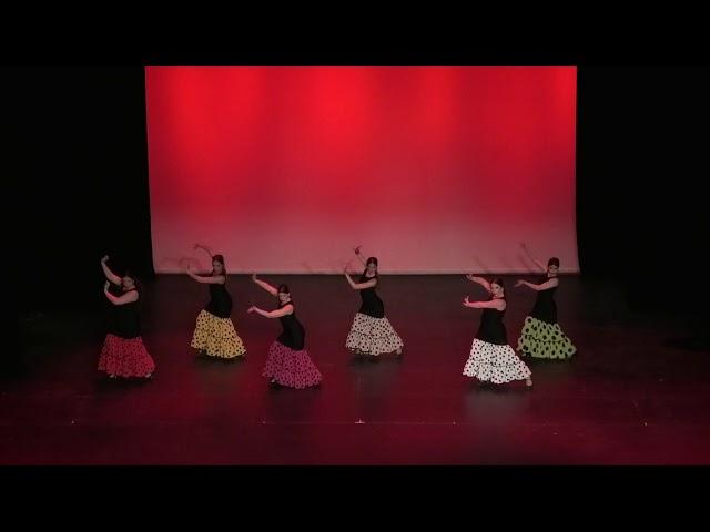 VI Gala Benéfica Día Internacional de la Danza 2019