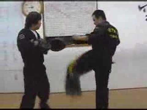 Techniques of Gongkwon Yusul (Korean Martial Arts)
