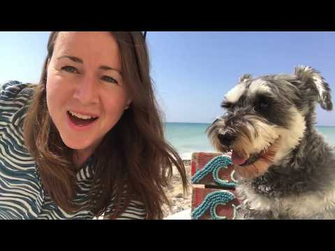 A little introduction to Week 4 of my 'Beachcombing Blanket'