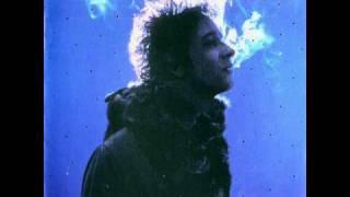 Gustavo Cerati - Raíz