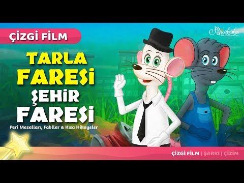 Tarla Faresi ve Şehir Faresi çizgi film masal 34 - Adisebaba Çizgi Film Masallar
