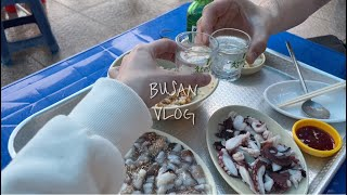 Trip to Busan/1박2일 부산 브이로그 여행코…
