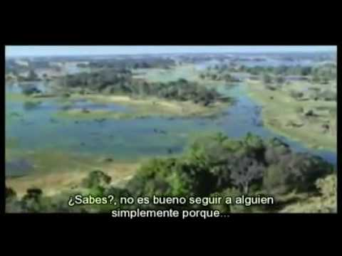 La tierra es sagrada /// The earth is sacred Travel Video