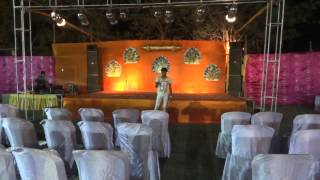 wedding theme /reception korba chattisgarh crazy chaps event organiser 09826181112