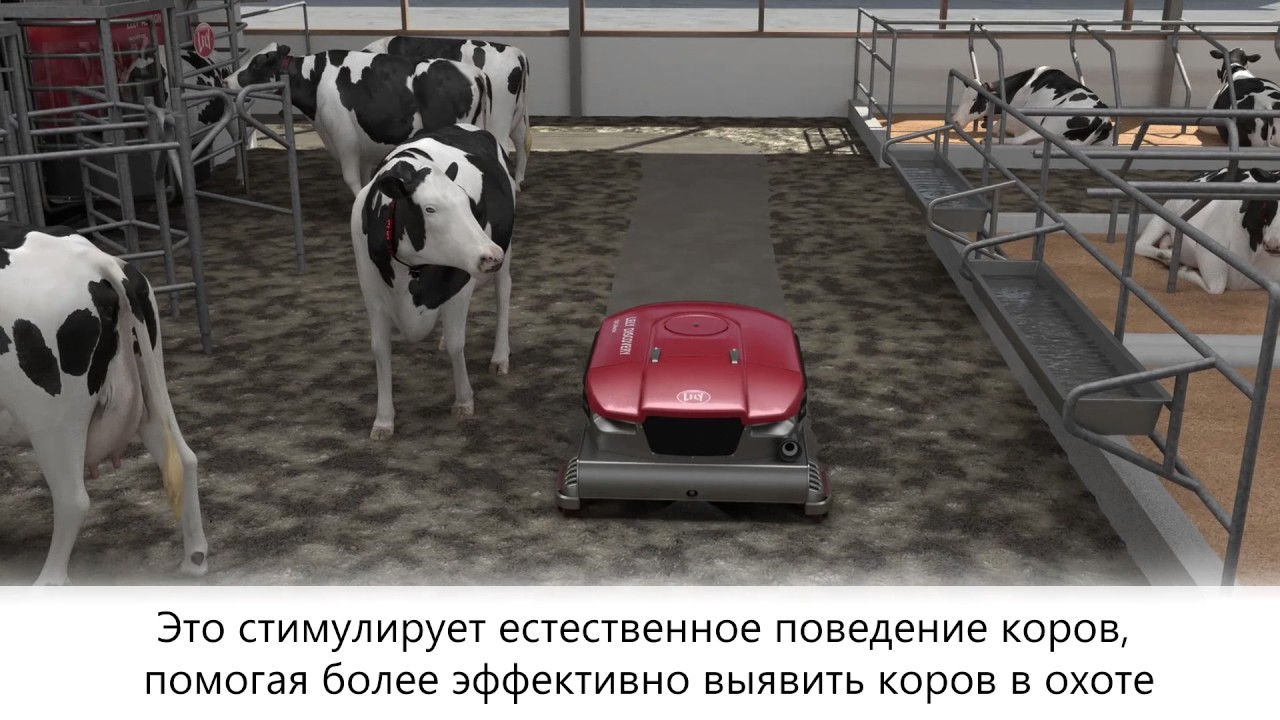 Lely Discovery 120 Collector - animation - RU